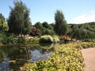 Mayfield Water Garden 2016