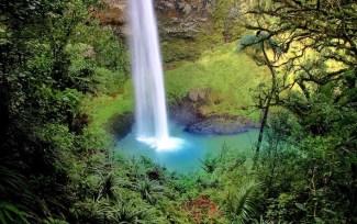 New Zealand North Island waterfall