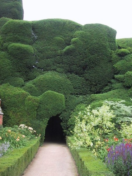 Powis Castle's famous yew hedge. Wales, UK. Photo from www.geograph.org.uk