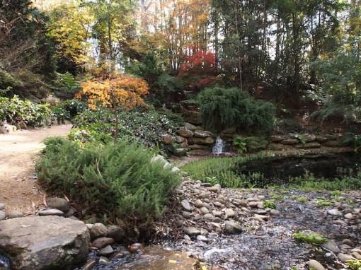 Wildwood garden Bilpin NSW