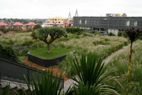 M Central rooftop garden Design Daniel Bafsky