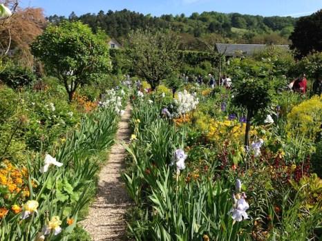 Monet's garden, Giverny, France. Photo Fiona Ericsson