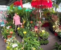 Queensland Garden Expo, Nambour