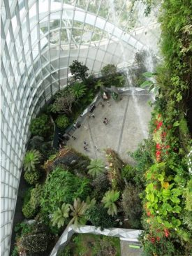 Singapore's Gardens by the Bay Cloud Forest. Photo Louise McDaid