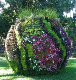 Tropical Garden Spectacular Darwin