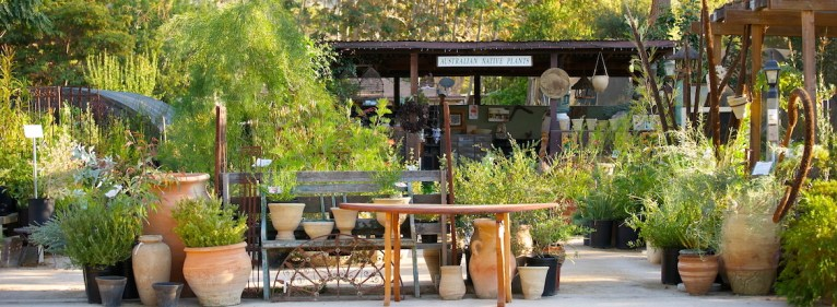 Australian Native Plants Nursery Ojai