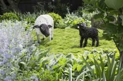 Lisa Ellis garden in Caulfield North