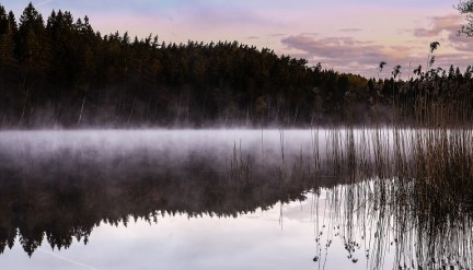 Mist clings to a lake in Sweden