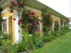 Private garden, Sweden