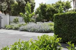 Lisa Ellis garden in Caulfield North