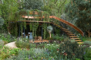 The Winton Beauty of Mathematics Garden. Designed by Nick Bailey. Sponsored by: Winton. RHS Chelsea Flower Show 2016.