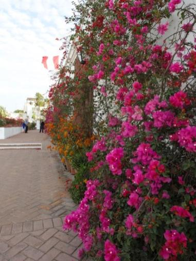 Walls of multi-coloured bougainvillea cover the entrance