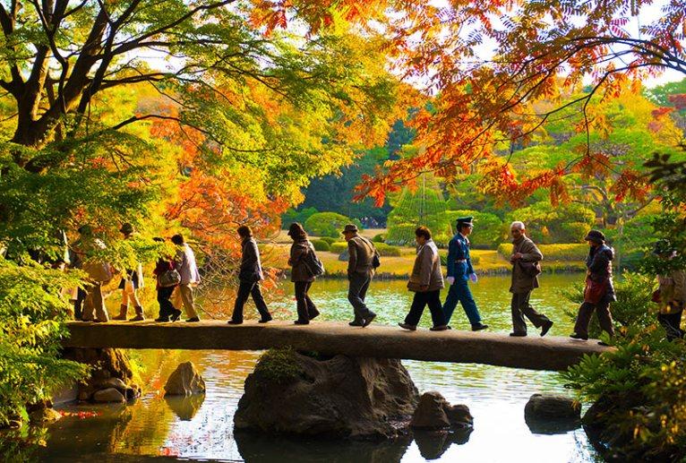 Rikugien Garden, Tokyo © Kyle Hasegawa/Flickr
