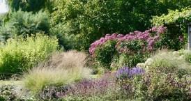 Tuin aan het Wieltje