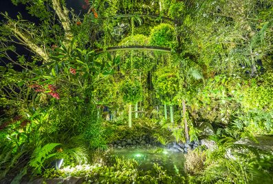 Power of the Earth by Katsuhiko Koga and Kazuhiro Kagae of Japan. Singapore Garden Festival 2016. Courtesy of National Parks Board Singapore