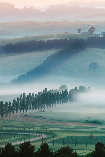 Morning Mist over Oberon © Mayfield