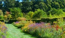 Frogmore Gardens