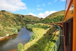 Taieri River and train on the Taieri Gorge Railway