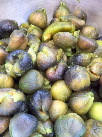Drained nearly ripe figs
