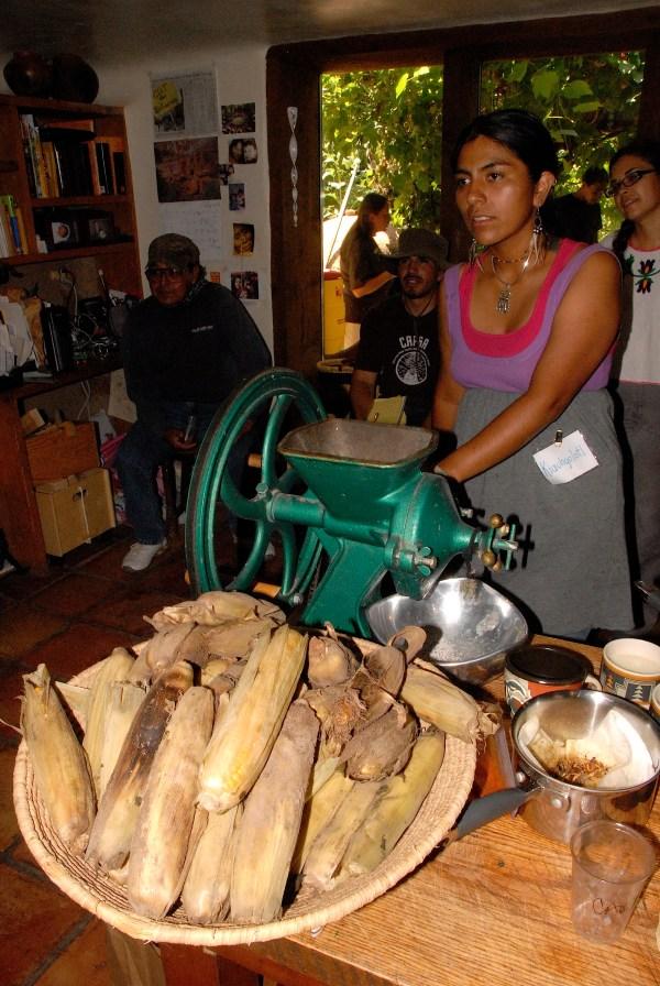 Traditional Native American Farmers Association Tnafa