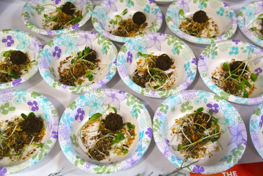 before the broth: dried buffalo meet, sunflowers sprouts, seed mix and flower petals. Photo by Elizabeth Hoover