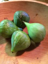 first figs