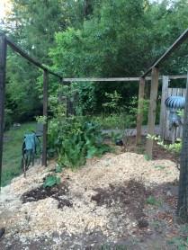 chicken yard day 1