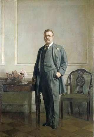 Joseph Rodefer DeCamp, Theodore Roosevelt, 1908
