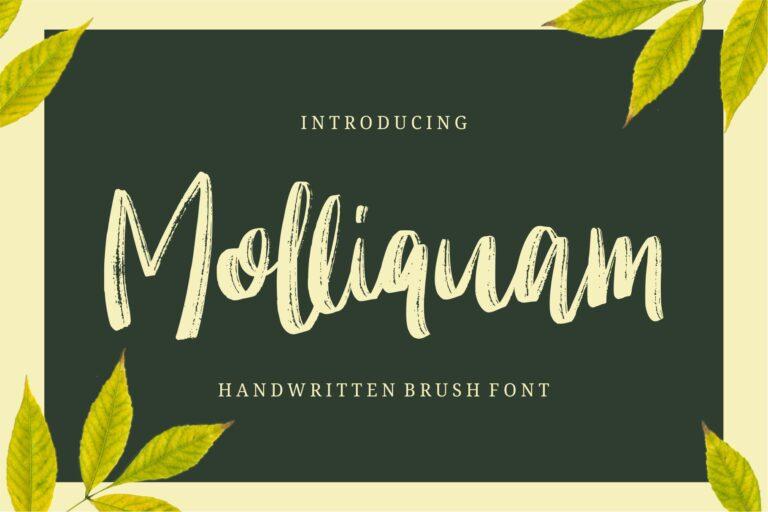 Preview image of Molliquam