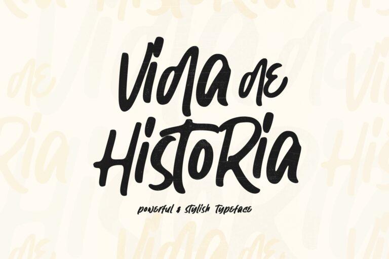 Preview image of Vida de Historia