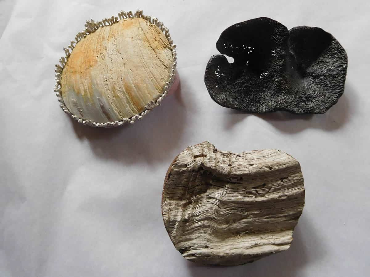 Marian Hosking, Abalone Brooch with Black peppermint rim, Sponger brooch and Teatree Brooch (After), 2016, Worn abalone shell, 925 silver, Found Sea Sponge, Found Tea tree driftwood, Abalone Brooch with Black peppermint rim: 1.3 x 8.2cm diameter, Sponger brooch: 2.2 x 8.5 x 5.5cm, Teatree Brooch: 2.5. x 7.2 x 6.5cm, photo: Marian Hosking, made in Melbourne, Australia