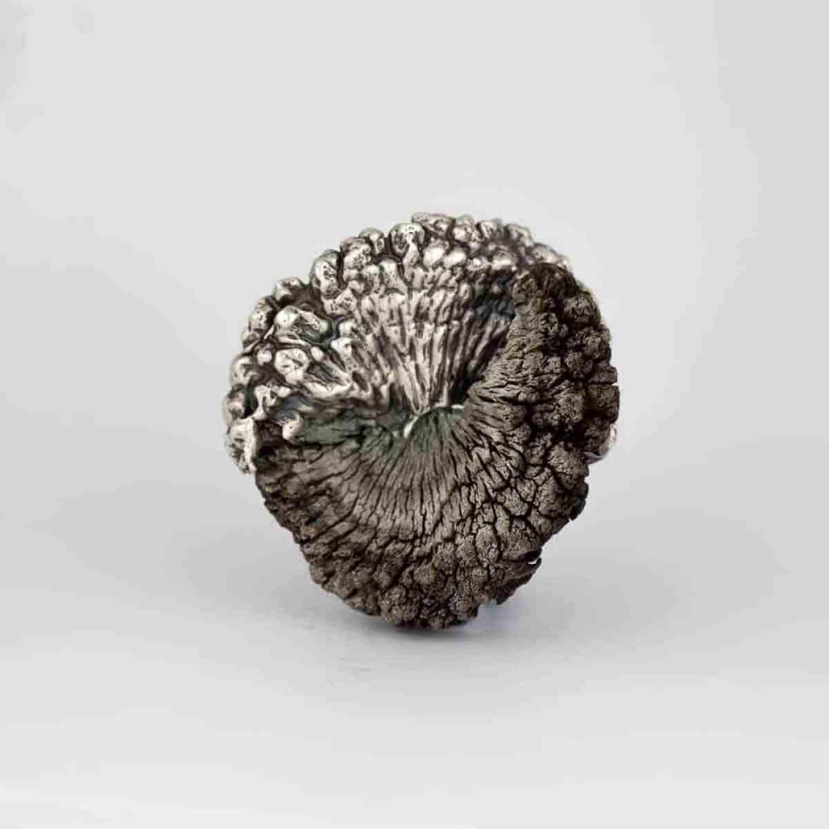 Marisa Molin, Kelp Track Wandering (After), Sterling silver, Kelp, stainless steel brooch, 5 x 5.3 x 2.1cm, photo: Marisa Molin, made in King Island, Tasmania