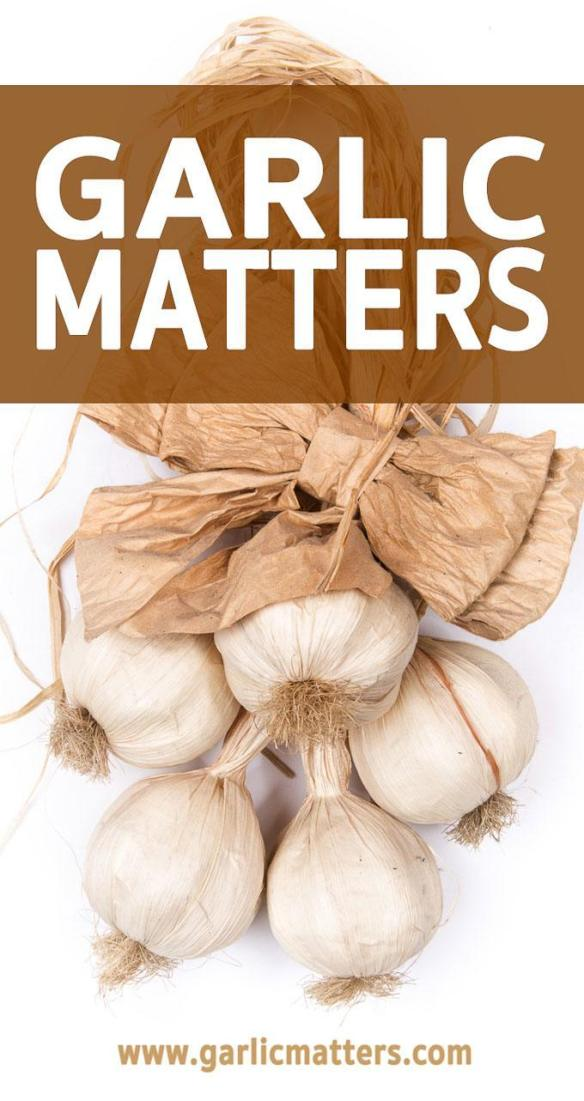 GARLIC MATTERS AND OTHER FOOD VENTURES  is a great website full of healthy, easy recipes.Garlic Tuesdays vs Garlic Free Fridays - always something yumazing! Appetizer, lunch, dinner and dessert ideas for two or whole family - ofter gluten free, vegetarian or vegan!
