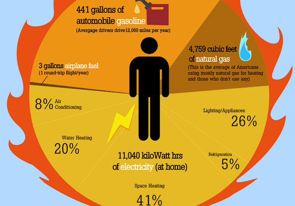 https://i0.wp.com/garmahis.com/wordpress/wp-content/uploads/2010/09/american-energy-consumption.jpg