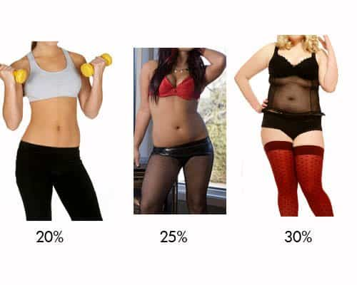 Female bodies at body fat between 20 and 30%