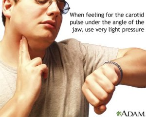 carotid pulse taking