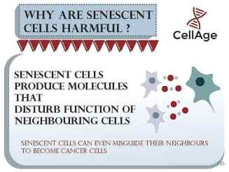Eliminate Senescent Cells