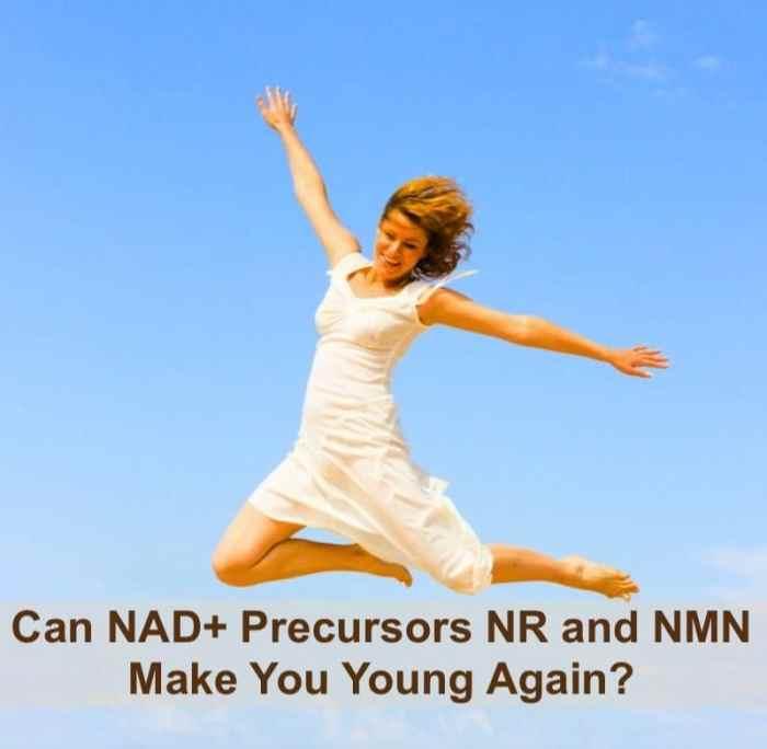 NAD+ precursors