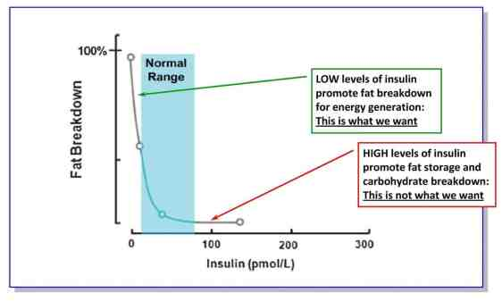 controlling glucose