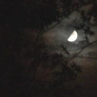 When I Gaze Into the Night Sky