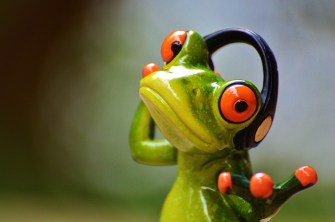 frogs-903221_960_720
