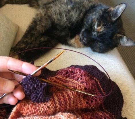 """Katten Rosa keder sig vældigt, men jeg syntes det var vildt spændende at lukke de sidste masker af og """"folde sjalet ud"""""""