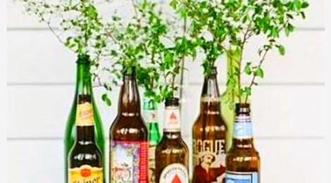 Obrigação de beber para compartilhar momentos felizes