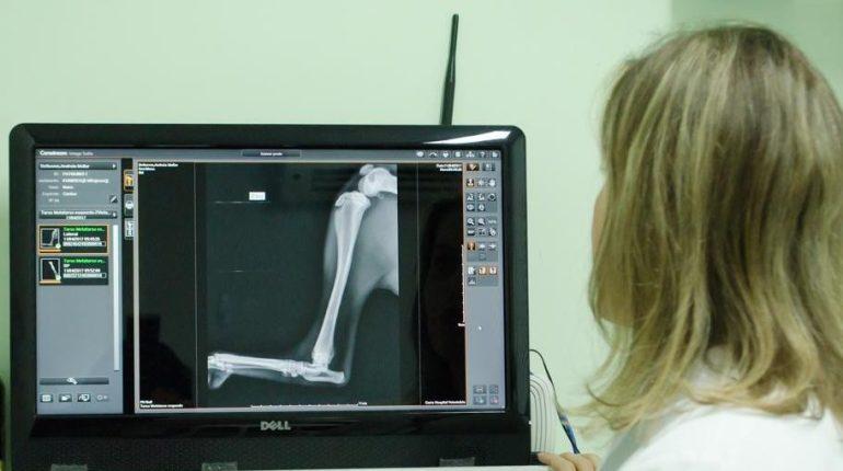 Diagnóstico por Imagem - Garra Hospital Veterinário