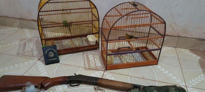 PF realiza operação em Rosário para colocar na gaiola caçadores de animais silvestres