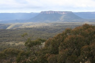 At the Lookout to Capertee Gorge near Ilford (4)