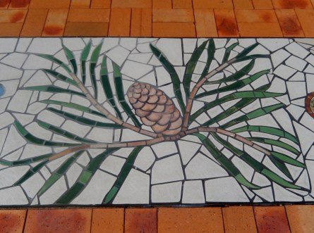 Meandering Macintyre Inverell footpath mosaic (10)