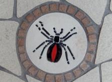 Meandering Macintyre Inverell footpath mosaic (13)
