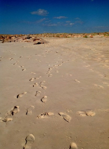 Cape Leveque Day Tour, WA, 27 May 2016 2016-05-27 099