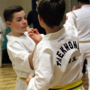 Gartson Taekwondo Rules - Etiquette - Pledge